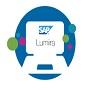 SAP-Lumira